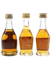 Bisquit Bottled 1970s & 2000s 3 x 3cl-5cl / 40%