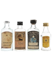 Assorted Gin  4 x 3cl-5cl