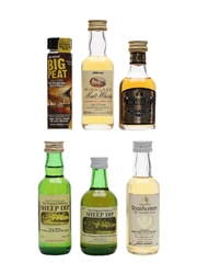 Assorted Blended Whisky  6 x 4cl-5.6cl