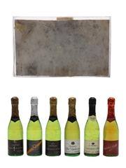 Alpa Novelty Champagne Bottles