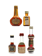 Assorted French Liqueurs Bottled 1960s-1980s 5 x 5cl