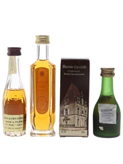 Camus, Hardy & Marnier Lapostolle  3 x 2.9cl-5cl / 40%