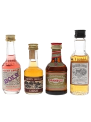 Bols, Calisay, Drambuie & Southern Comfort  4 x 3cl-5cl