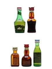 Assorted French Liqueurs Benedictine, Cherry Marnier, Cointreau, Grand Marnier & Ricard 5 x 2.8cl - 3cl