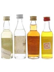 Assorted Spainish Rum  4 x 4.5cl-5cl