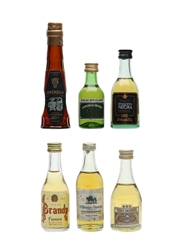 Assorted Aguardiente & Brandy  6 x 4cl-5cl