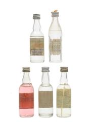 Assorted Polish Vodka Bottled 1970s 5 x 5cl