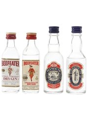 Beefeater and Coates & Co. Gin  4 x 5cl