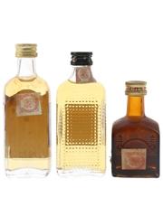 Double V, DYC & Gran Dyc Bottled 1970s-1980s 3 x 4.7cl-5cl