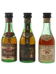 Torres Fontenac, Hors D'Age & Solera  3 x 4.2cl