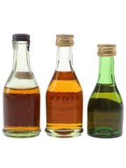 Salignac Cognac Bottled 1960s-1970s 3 x 3cl-5cl / 40%
