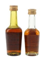 Hennessy Bras Arme Bottled 1960s-1970s 2 x 5cl / 40%