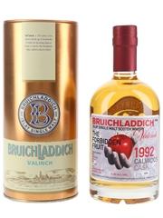 Bruichladdich Valinch 1992 19 Year Old The Forbidden Fruit  50cl / 51.6%