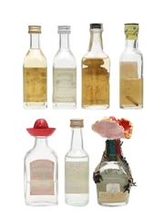Tequila & Mezcal Miniatures Incl. Jose Cuervo & Sierra 7 x 5cl