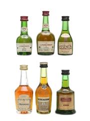 Cognac Miniatures Incl. Delamain, Hennessy & Courvoiser 5cl, 3 x 4cl & 2 x 3cl
