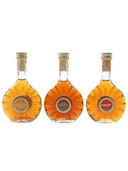 Bardinet Apricot Brandy, Creme De Cafe & Cherry Brandy  3 x 5cl