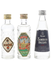 Assorted Anise Liqueurs
