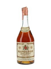 Jami & Co. VSOP 5 Year Old Napoleon Brandy Bottled 1970s - Filipetti Irvas Canelli 75cl / 40%