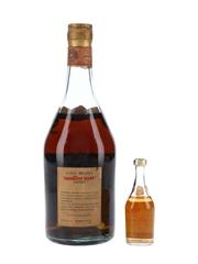 SIS Cavallino Old Brandy Bottled 1960s 3.8cl & 75cl