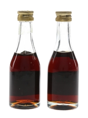 Don Juan Brandy 6 Year Old & 12 Year Old 2 x 3cl / 40%