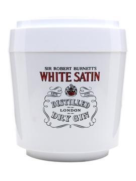 Sir Robert Burnett's White Satin