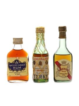 Jamaica Rum, Sobarano & Terry