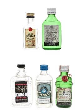 Assorted Gin & Jenever