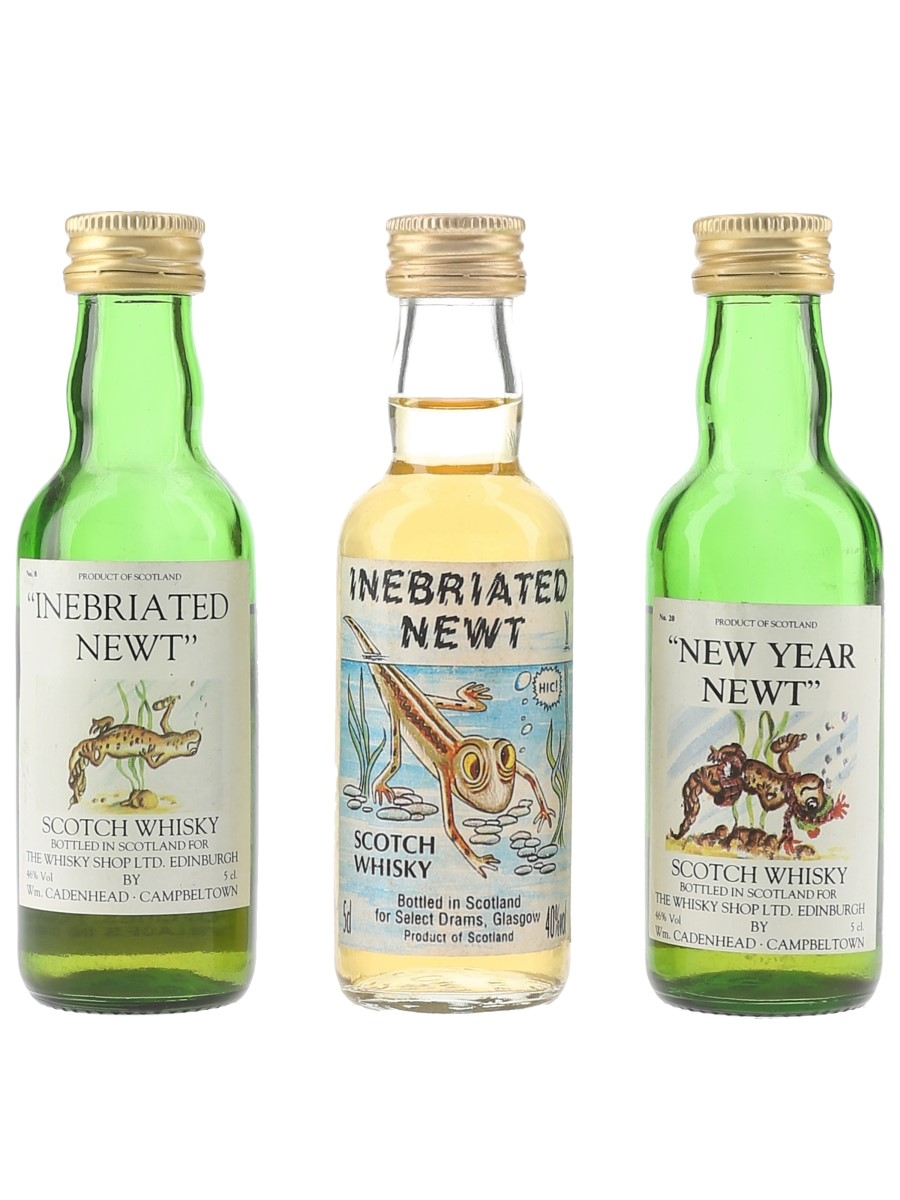 Inebriated & New Year Newt  3 x 5cl